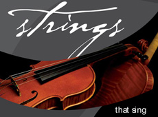 "D'Addario → ""Strings Thats Sing"" Catalog → more…"